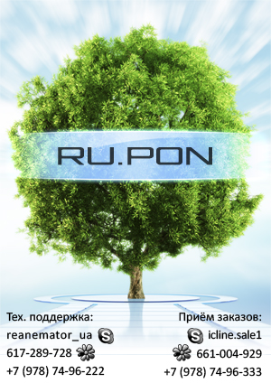 RU.PON Logo